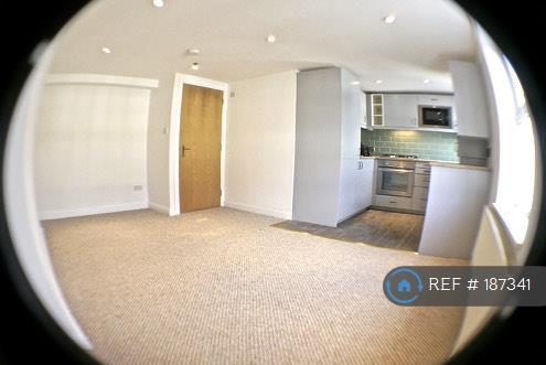 Living Room Fisheye Lens