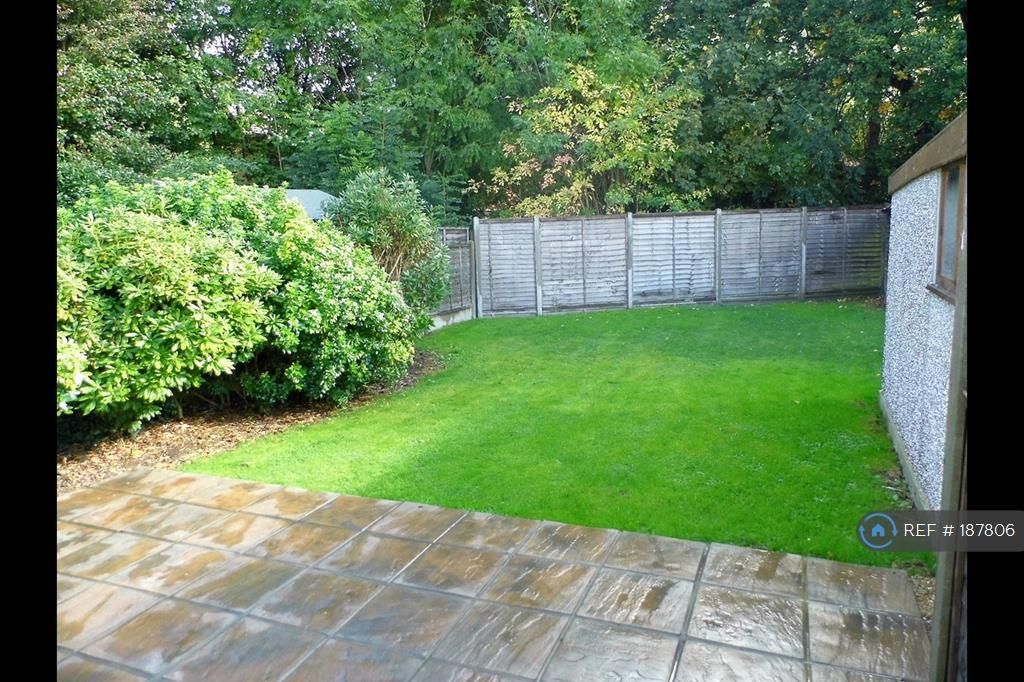 Good Sized Garden