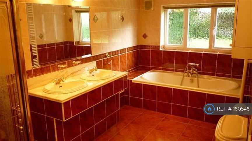 Master Bathroom Angle 2