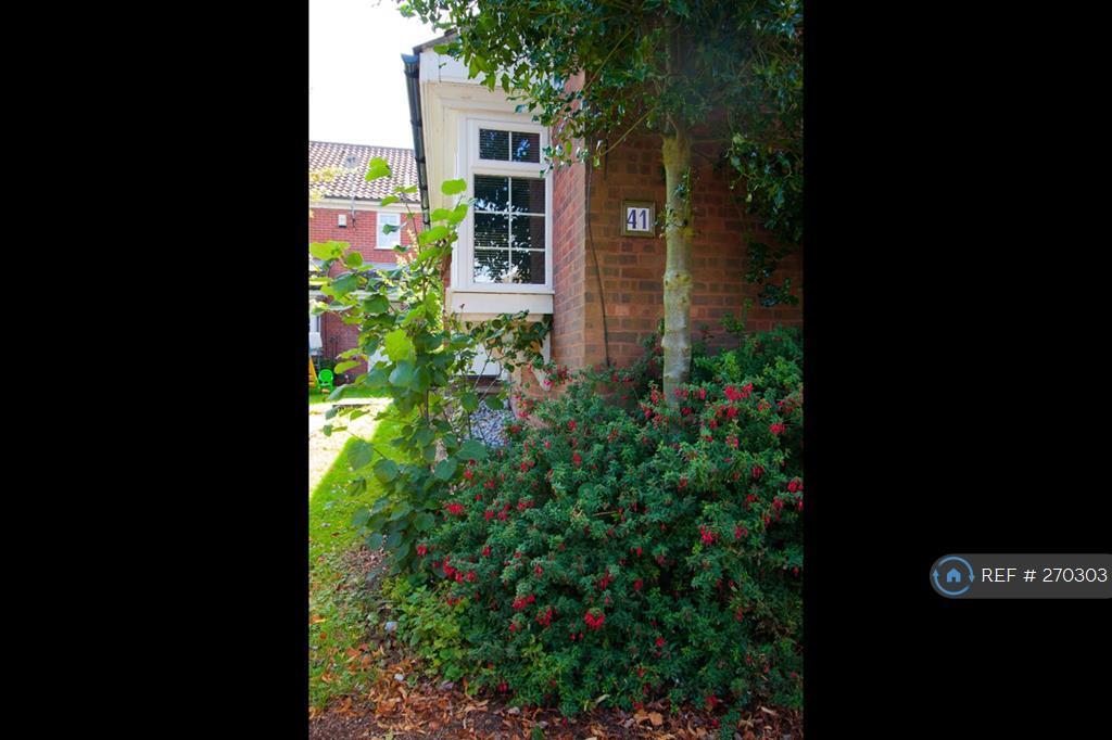 Leafy Outside Of House