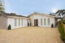 Detached Bungalow in Striking contemporary...