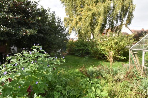 Side garden_1.JPG