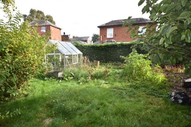 Side garden_2.JPG