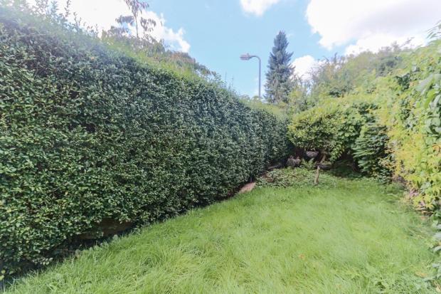 Garden - Aspect 2
