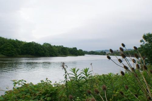 Desirable Riverside Position