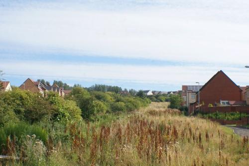 Derwent View Development