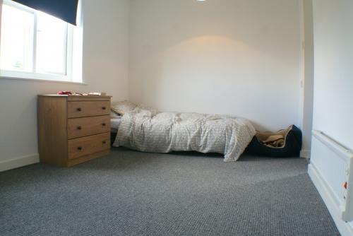 Studio Living/Sleeping Space
