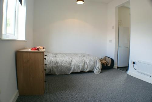 Studio Living & Sleeping Space