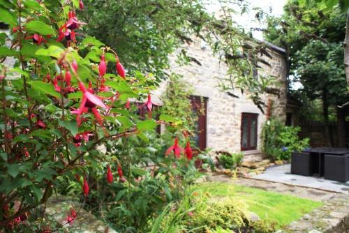 Exterior & Gardens