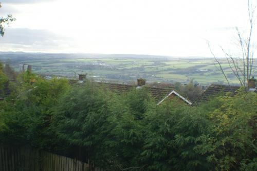 Views From Rear Bedroom