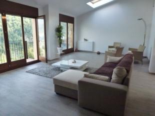 Massana Penthouse for sale