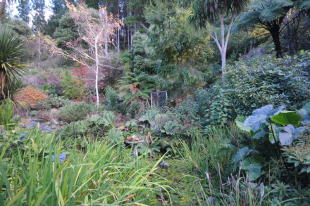 property for sale in Otaki, Wellington, New Zealand