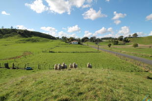 property for sale in West Road, Tokoroa, New Zealand