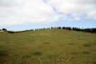 property for sale in Lot 1 Elingamite Drive, Pukenui 0000