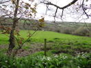 Land for sale in St. Columb
