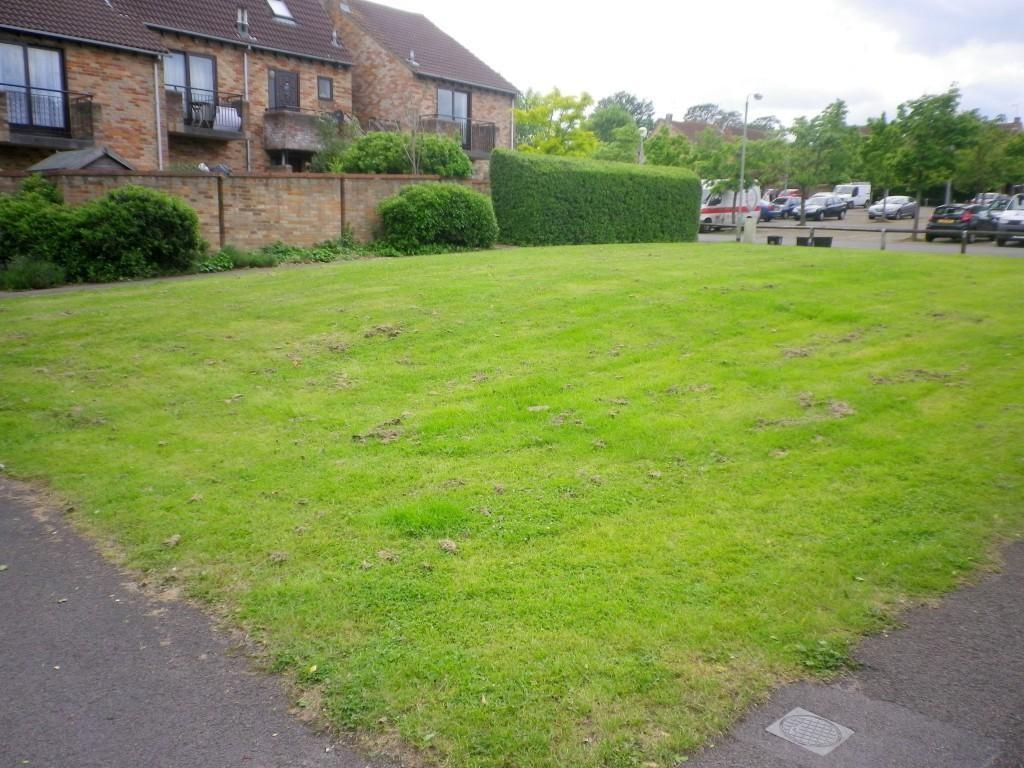 Green to Front of Property