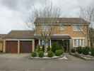 4 bedroom Detached property to rent in Caraway Road, Earley...
