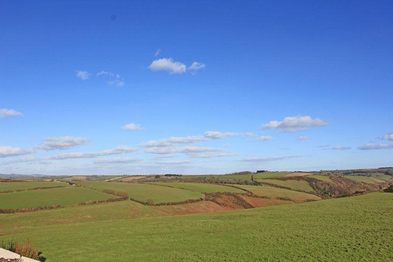 North East Views