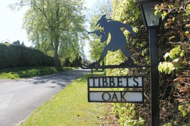 Tibbets Oak