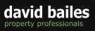 David Bailes, Stanley logo