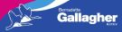 Gallagher Auctioneers Ltd, Co Leitrim logo