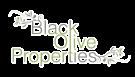Black Olive Properties, Alicante details