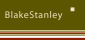 Blake Stanley Estate Agents, London  logo