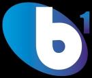 B1 Residential Limited, Birmingham logo