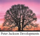 Peter Jackson Developments, Stoke-on-Trent logo