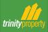 Trinity Property, Dudley logo