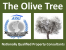 The Olive Tree Pinoso, Alicante logo
