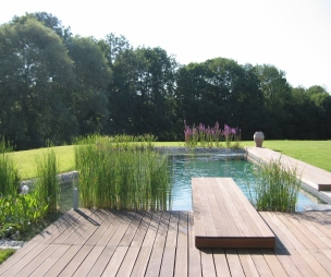 photo of natural robert james landscapes garden with swimming pool and decking natural pool