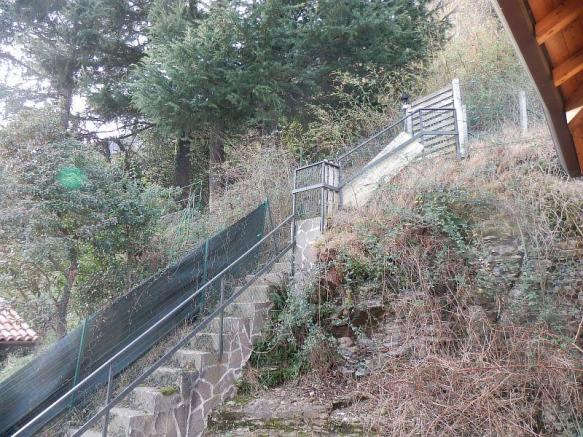 Steps to woodland
