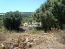 Land in Loule for sale