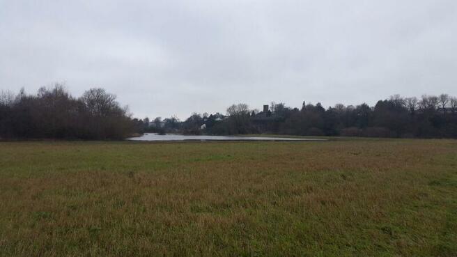Flood Plain & River