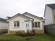 3 bed Detached Bungalow in Kenneth Court, Kennoway...