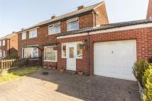 3 bedroom semi detached house for sale in Ronaldshay Terrace...