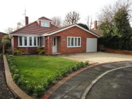 4 bedroom Detached Bungalow in SOUTHLANDS ROAD