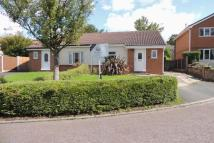 Semi-Detached Bungalow in The Cedars, Chorley