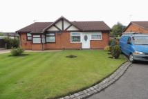 Semi-Detached Bungalow to rent in Springfield Road North...