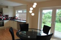 3 bed semi detached house to rent in Cedar Avenue, Euxton...