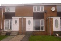 Terraced house to rent in Hamsterley Drive, Crook