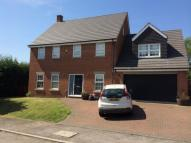 Detached property to rent in The Burn, Willington...