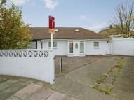 Semi-Detached Bungalow to rent in Lowfield Road, Acton