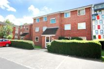 Sunninghill Court Flat to rent