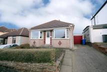Detached Bungalow to rent in Greenhill Main Road...