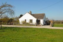 2 bed Detached Bungalow for sale in Cholstrey, Herefordshire
