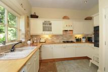 Semi-Detached Bungalow for sale in Docklow, Herefordshire