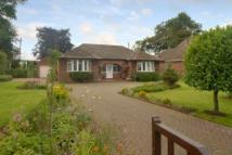 Detached Bungalow for sale in Leominster, Herefordshire