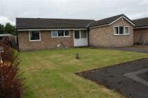 Detached Bungalow for sale in Walnut Close, Penwortham...